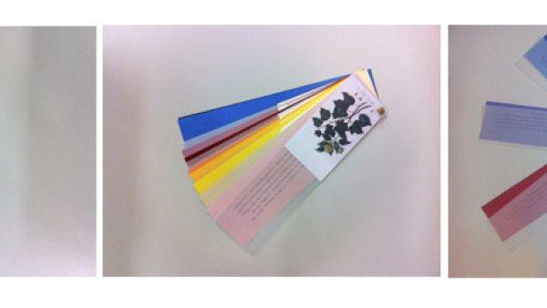 plantascolor - materiales - profesores - profesores y estudiantes - educathyssen (1)