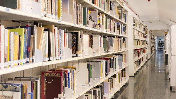 Proyecto: La biblioteca de 'Lección de arte'
