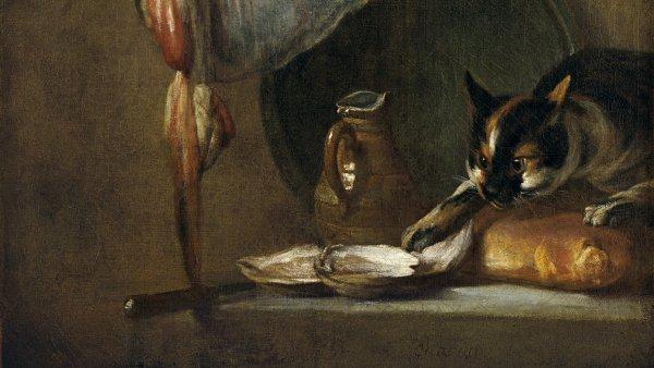 Bodegón con gato y raya. . Jean-Baptiste-  Siméon Chardin