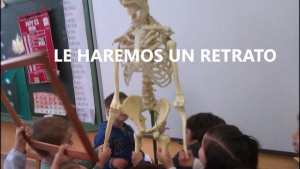 esqueleto - video - musarana - profesores y estudiantes - educathyssen